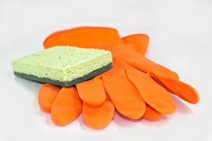 Scrub And Gloves