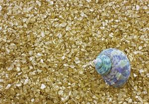 Sea Shell Golden Pebbles