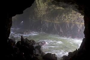 Sealion Cave