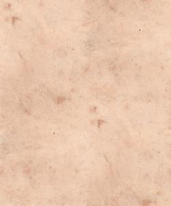 Seamless 48 Texture