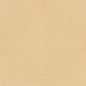 Seamless Paper 3 Texture