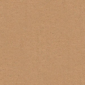 Seamless Paper 7 Texture