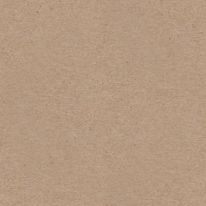 Seamless Paper 9 Texture