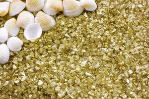 Seashell And Golden Pebbles