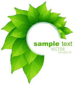 Seasons. Summer. Fresh Green Leaves Vector Frame.