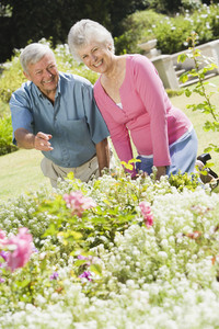Senior couple working together in garden