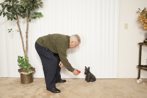 Senior man instructing pet