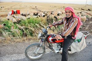 Senior shepherd on bike