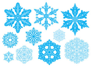 Set Of 10 Snowflakes. Natural And Fantasy. Easy To Change Color