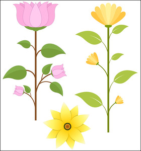 Set Of Vector Flowers Illustration