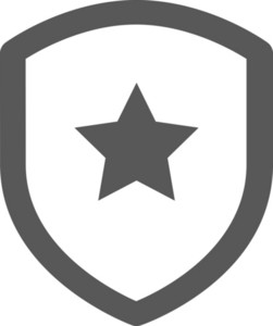 Shield With Star Stroke Icon