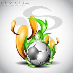 Shiny Soccer Ball.
