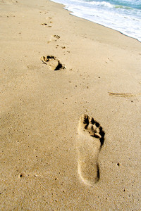 Shot of footprints in the sand at the beach