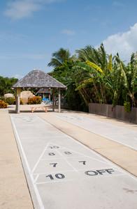 Shuffleboard Court