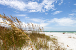Siesta Key Beach is located on the gulf coast of Sarasota Florida with powdery sand. Recently rated the number 1 beach location in the United States. Shallow depth of field with focus on the grasses.