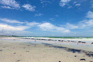 Siesta Key Beach is located on the gulf coast of Sarasota Florida with powdery sand.