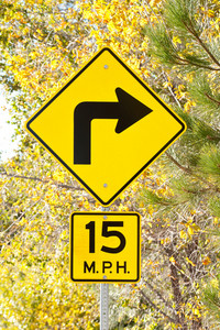 Sign Curve Sign With Fall Foliage
