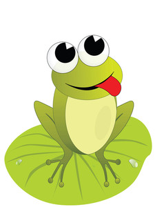 Sitting Frog Illustration