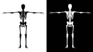 Skeleton Black   White