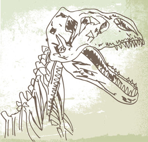 Sketch Of Dinosaur Fossil. Vector Illustration