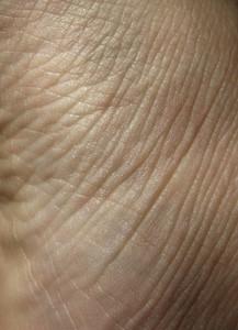 Skin 4 Texture