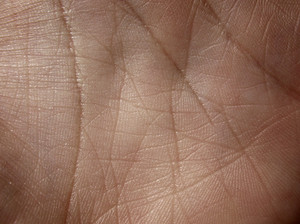 Skin 5 Texture