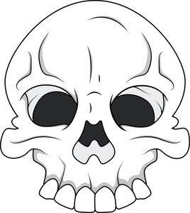 Skull - Royalty Free Vector