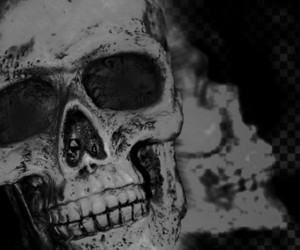 Skull Scary Background