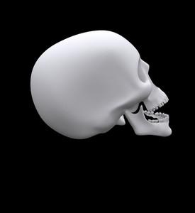 Skull Side Face