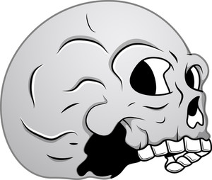 Skull - Side View Illustration