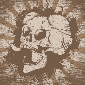 Skull With Floral And Grunge