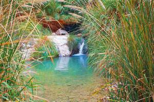 Small waterfall in Ein Gedii oasis in the Judaean Desert