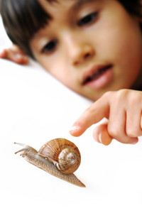Snail and kid