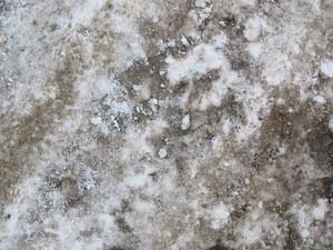 Snow 13 Texture