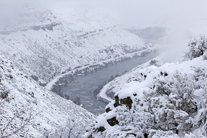 Snowfall Landscape 218
