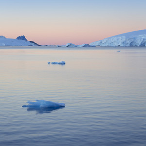 Snowy coast and ice floe at sunset