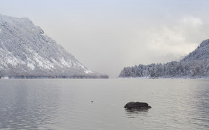 Snowy forest and mountain at the edge of a foggy lake