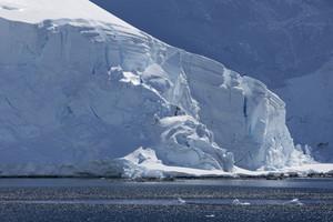 Snowy, sunlit coast in icy waters