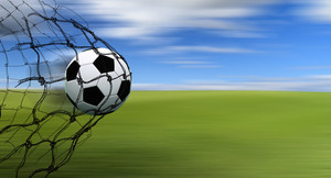 Soccer Ball In A Net