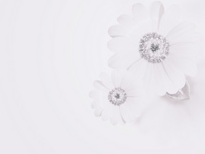Soft Subtle Flower Background