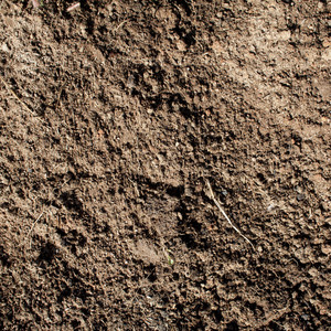 Soil texture and background