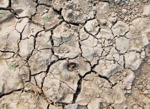 Soil Texture