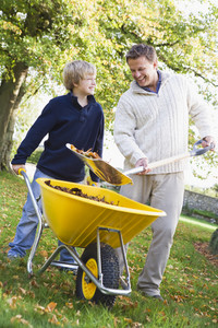 Son helping father collect autumn leaves in wheelbarrow