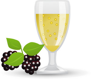 Sparkling Wine Icon