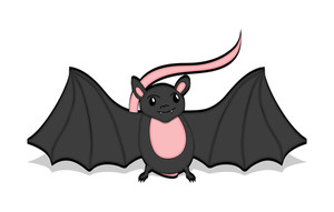 Spooky Bat With Tail