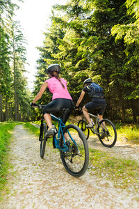 Sporty mountain bikers in forest from behind