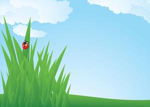 Spring Grass. Vector.