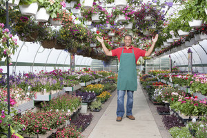 Staff at plant nursery