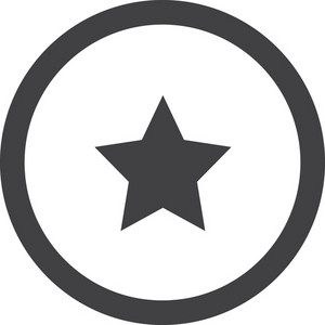 Star In Circle Stroke Icon