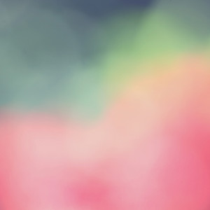 Abstract nature flowers colorful background. Blur